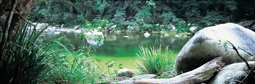What to Do Around the Mossman River