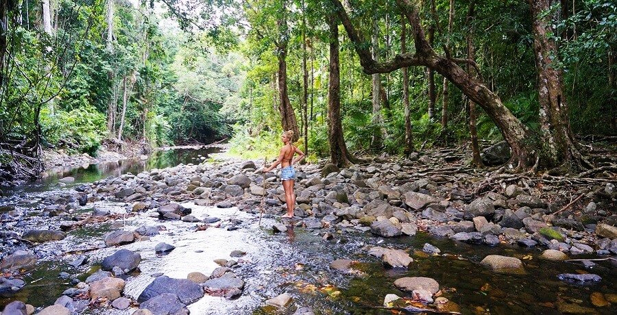 River in Daintree National Park