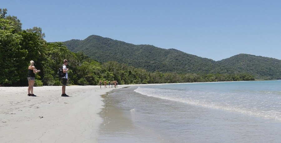 Cape Tribulation - Daintree Rainforest