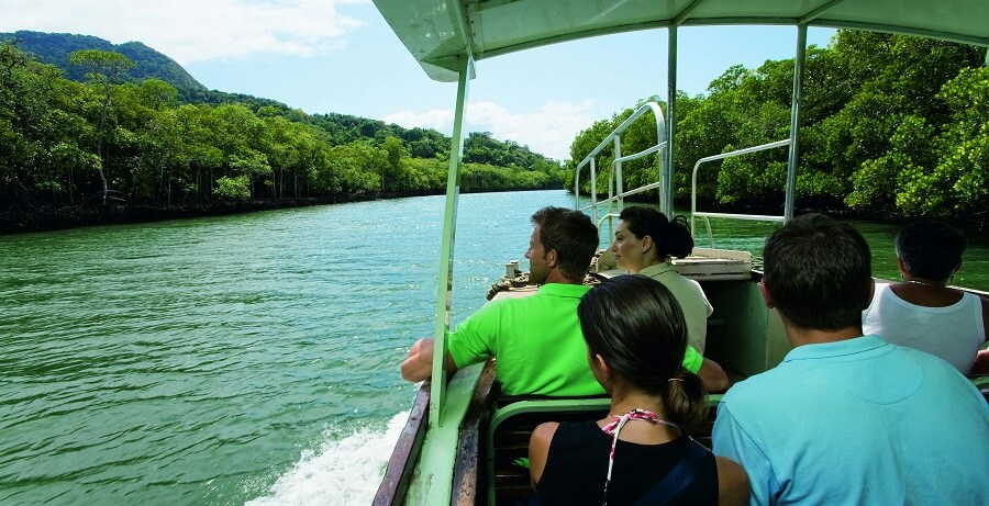 Cape Tribulation and Daintree Rainforest Tour Crocodile Spotting