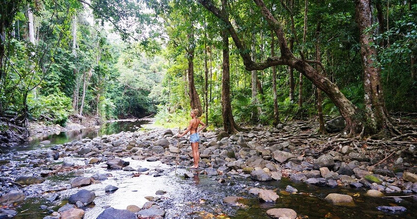 Daintree Rainforest Tours - Emogen Creek