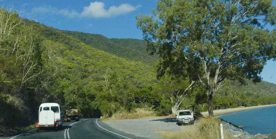 How to go from Cairns to Cape Tribulation