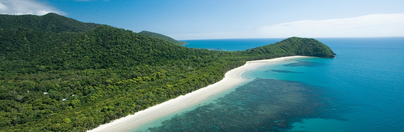Which is the Best Cape Tribulation & Daintree Rainforest Tour?