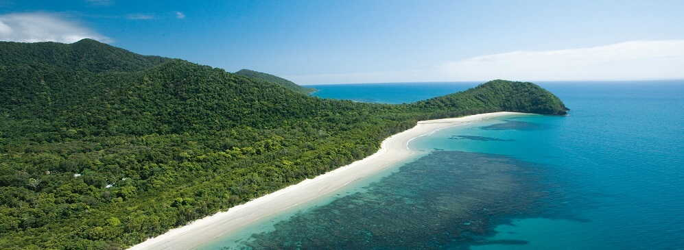 1 Day Cape Tribulation & Daintree Tour with Mossman Gorge $145