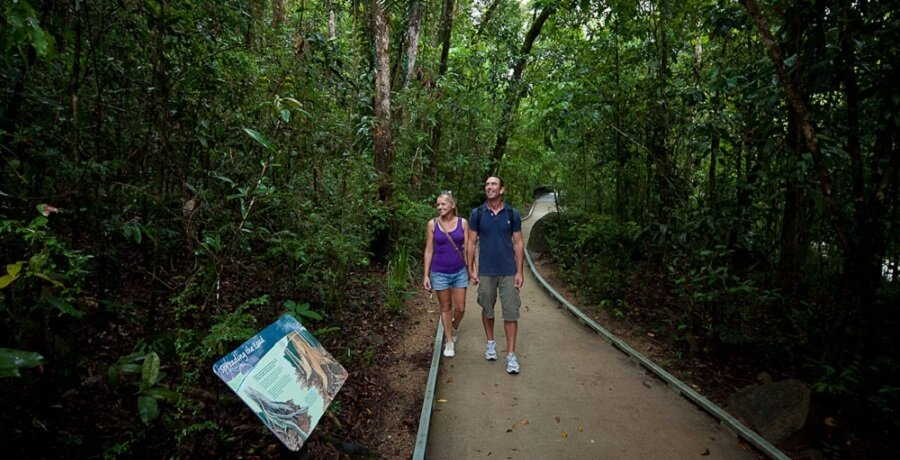 mossman gorge national park walking track