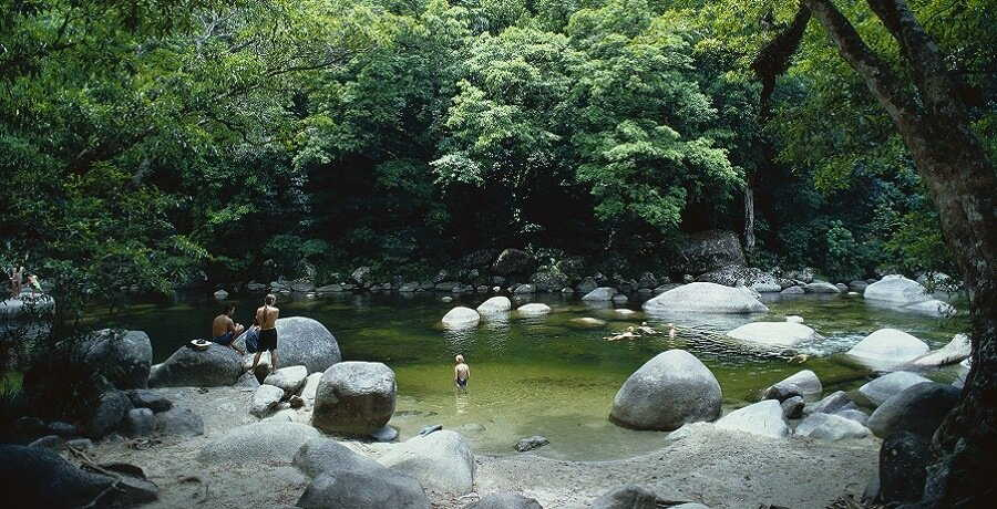 mossman gorge view