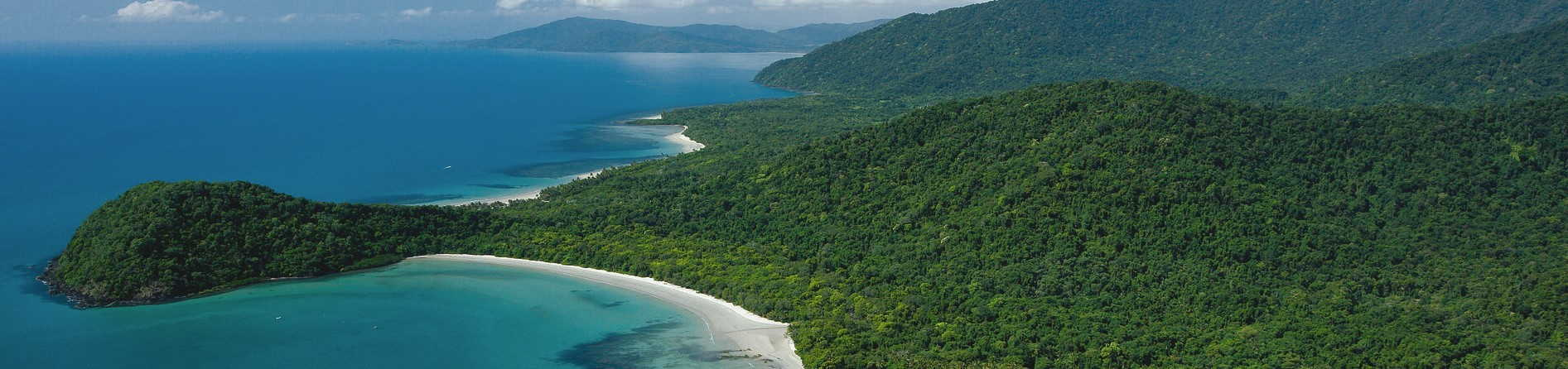 How can you see Cape tribulation during the pandemic?