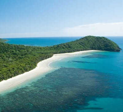 1 Day Cape Tribulation & Daintree Tour with Mossman Gorge $159