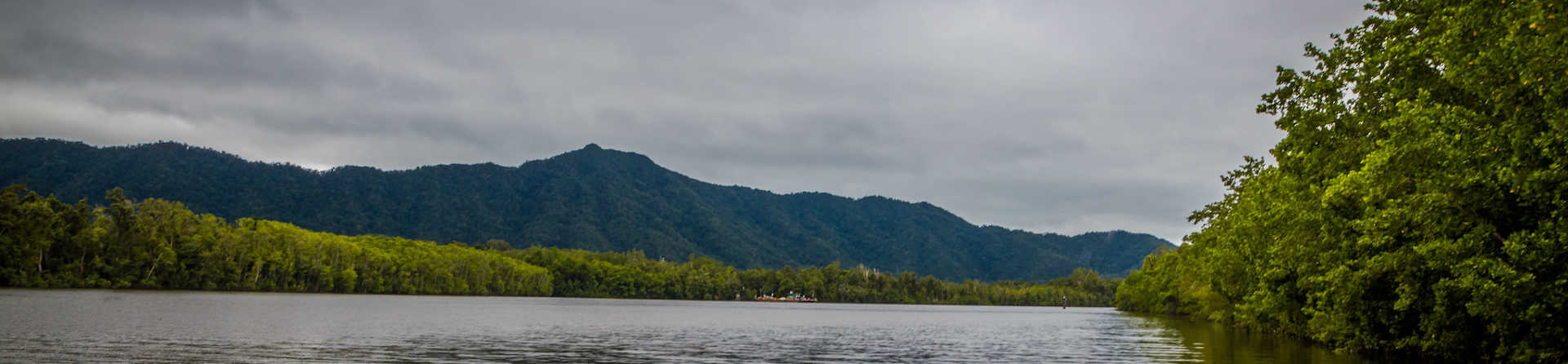 How much does it cost to go to the Daintree rainforest?